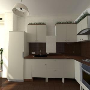 тут новый зал и кухня_ACCamera_14
